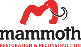 Mammoth Restoration & Reconstruction